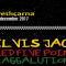 Novo v prodaji: Sublime night z Elvis Jackson, RFPS in Raggalution v Cvetličarni